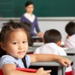Portrait Of Female Pupil Working At Desk In Chinese School Class — Stock Photo #24442833