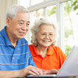 Senior Chinese Couple Sitting At Desk Using Laptop At Home — Stock Photo #24444023