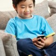 Stock Photo: Young Chinese Boy Using Mobile Phone On SofAt Home