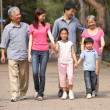 Stock Photo: Portrait Of Multi-Generation Chinese Family Walking In Park Toge