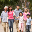 Portrait Of Multi-Generation Chinese Family Walking In Park Toge — Stock Photo #24445823