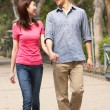 Young Chinese Couple Walking In Park — Stock Photo