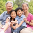Chinese Grandparents Sitting With Grandchildren In Park - Stock Photo