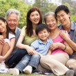 Portrait Of Multi-Generation Chinese Family Relaxing In Park Tog - Foto Stock