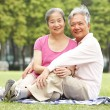 Senior Chinese Couple Relaxing In Park Together — Stock Photo