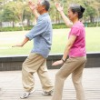 Senior Chinese Couple Doing Tai Chi In Park — Stock Photo
