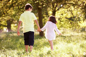 Boy And Girl Walking Through Summer Field Together — Stock Photo