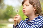 мальчик сидел в поле дует одуванчик — Стоковое фото