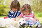 Two Children Petting Family Dog In Summer Field — Stock Photo