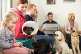 Sala de espera ocupada em cirurgia veterinária — Foto Stock