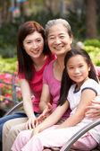 Mujer multi genenration chino familiar grupo sentado en el banco me — Foto de Stock