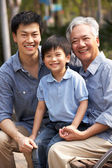 Male Multi Genenration Chinese Family Group Sitting On Bench In — Stock Photo