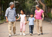 Chinese Grandparents Walking Through Park With Grandchildren — Stock Photo