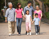 Portrait Of Multi-Generation Chinese Family Walking In Park Toge — Foto de Stock