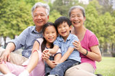 Chinese Grandparents Sitting With Grandchildren In Park — Foto Stock