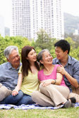 Portrait Of Chinese Parents With Adult Children Relaxing In Park — Stock Photo