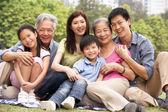 多代中国家庭放宽在公园过渡补贴的肖像 — 图库照片