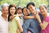 Retrato de multigeneración chino familiar relajante en subvención tog parque — Foto de Stock
