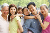 Portrait Of Multi-Generation Chinese Family Relaxing In Park Tog — Stock Photo