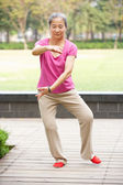 Senior Chinese Woman Doing Tai Chi In Park — Stock Photo