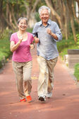 Senior Chinese Couple Jogging In Park — Stock Photo