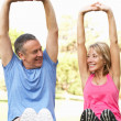 Senior Couple Exercising In Park - ストック写真