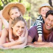 Family Relaxing In Park Together — Stock Photo #24639263
