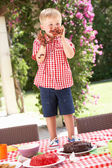Ragazzo mangiando la pappa e torta al partito di tè all'aperto — Foto Stock