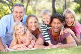 Grupo familiares relajantes en parque juntos — Foto de Stock