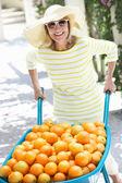 Senior donna spingendo la carriola piena di arance — Foto Stock