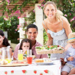 Woman Serving Meal To Two Families — Stock Photo #24640227