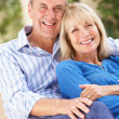 Senior Couple Relaxing On Sofa At Home — Stock Photo #24640405