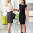 Two Businesswomen Shaking Hands In Modern Office — Stock Photo #24644599