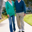 Senior Couple Walking In Park Together — Stockfoto