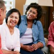 Group Of Senior Friends Chatting At Home Together — Stock Photo