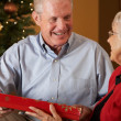 Stock Photo: Senior Couple Exchanging Gifts In Front Of Christmas Tree