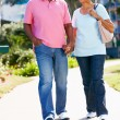 Senior Couple Walking In Park Together — Stock Photo #24645361