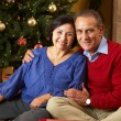 Senior Couple In Front Of Christmas Tree — 图库照片