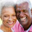Outdoor Portrait Of Happy Senior Couple — Stock Photo #24646065