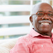 Portrait Of Happy Senior Man At Home — Stock Photo #24647335