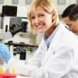 Male And Female Scientists Using Microscopes In Laboratory — Stock Photo #24649007