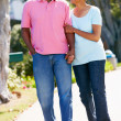 Senior Couple Walking In Park Together — Stock Photo #24649023
