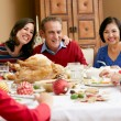 Multi Generation Family Celebrating With Christmas Meal — Stock Photo #24649097