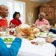 Multi Generation Family Celebrating With Christmas Meal — Stock Photo #24649217