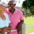 Senior Couple Walking In Park Together — Stock Photo #24649299