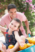 Father Pushing Daughter In Wheelbarrow Filled With Oranges — Stock Photo