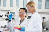 Male And Female Scientists Working In Laboratory — Stock Photo