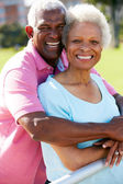 Outdoor Portrait Of Happy Senior Couple — Stock Photo