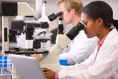 Mâles et femelles des scientifiques à l'aide de microscopes de laboratoire — Photo