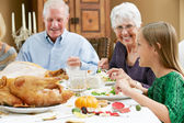 Granddaughter Celebrating Thanksgiving With Grandparents — Stock Photo